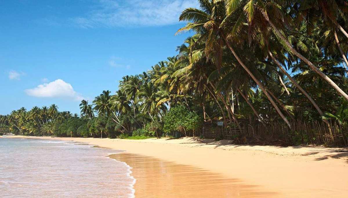Sri Lanka. часть ii. villes  Sri Lanka. часть ii. villes Sri Lanka. part ii. villesdeuxieme PARTIE